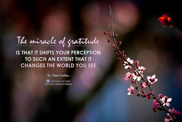 The miracle of gratitude is that it shifts your perception to such an extent that it changes the world you see.