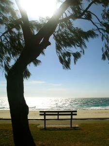 a quiet moment of a bench on the beach